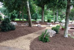 Landscape Design Plantings